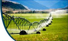 Agriculture pump motors